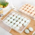 雞蛋保鮮盒